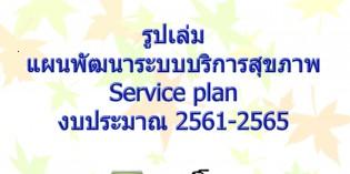 รูปเล่มแผนพัฒนาระบบบริการสุขภาพ Service plan งบประมาณ 2561-2565
