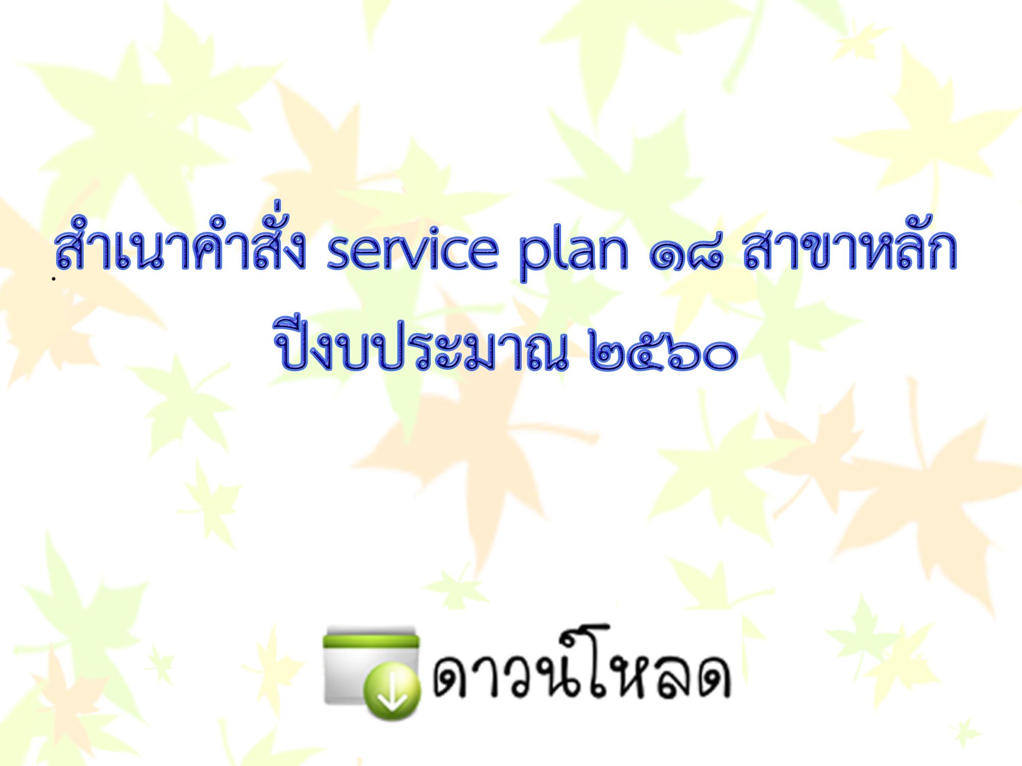 คำสั่ง service plan 18 สาขาหลัก 2560