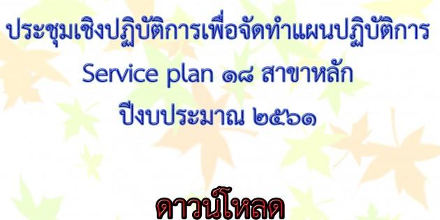 ประชุมเชิงปฏิบัติการเพื่อจัดทำแผนปฏิบัติการ Service plan   18 สาขาหลัก ปีงบประมาณ 2561